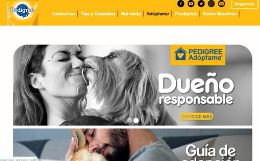 Pedigree advocates for Pet Adoption in Latin America