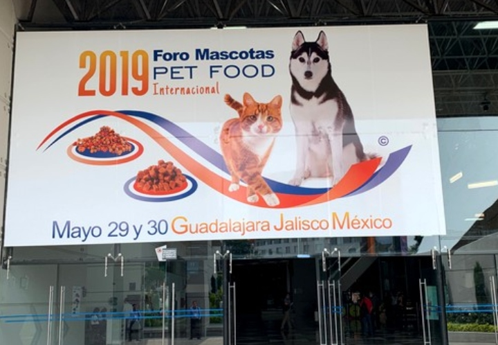 Four Trends in the Mexican Pet Food Market