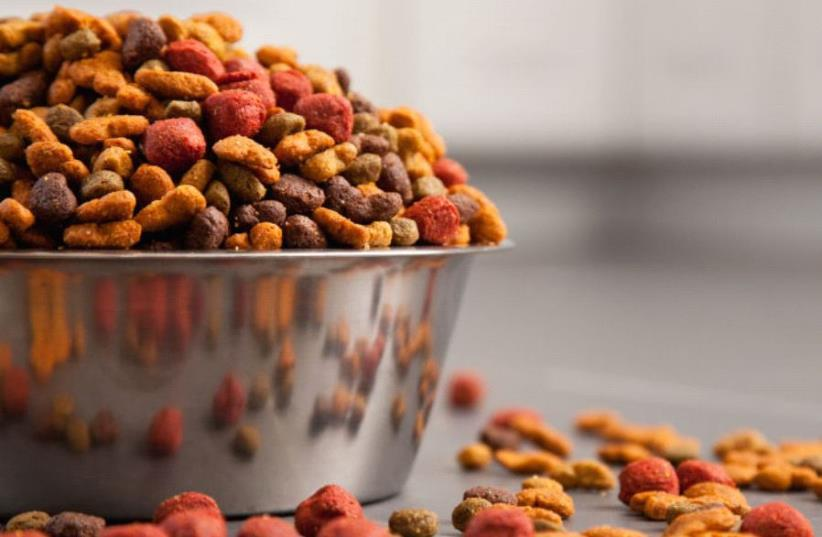 2020 trends for the Pet Food industry