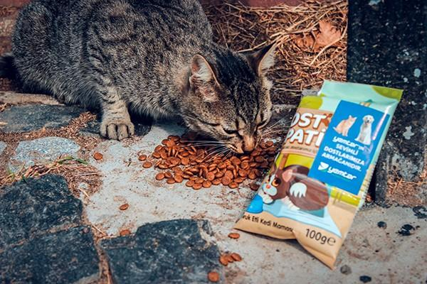 Yemtar Provides Feed for Cats and Dogs